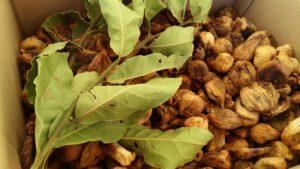 winter food prep ideas - figs